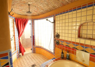 Master Shower Indoor/Outdoor